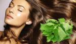 Народные рецепты для укрепления и роста волос. Домашний уход — салонный результат!