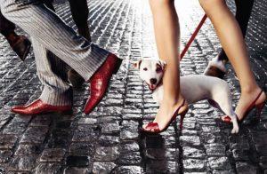 Правильный уход за кожаной обувью — 5 советов. Что вредит и что на пользу обуви из натуральной кожи