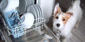 ТОП — 6 очевидных плюсов посудомоечной машины для современной семьи